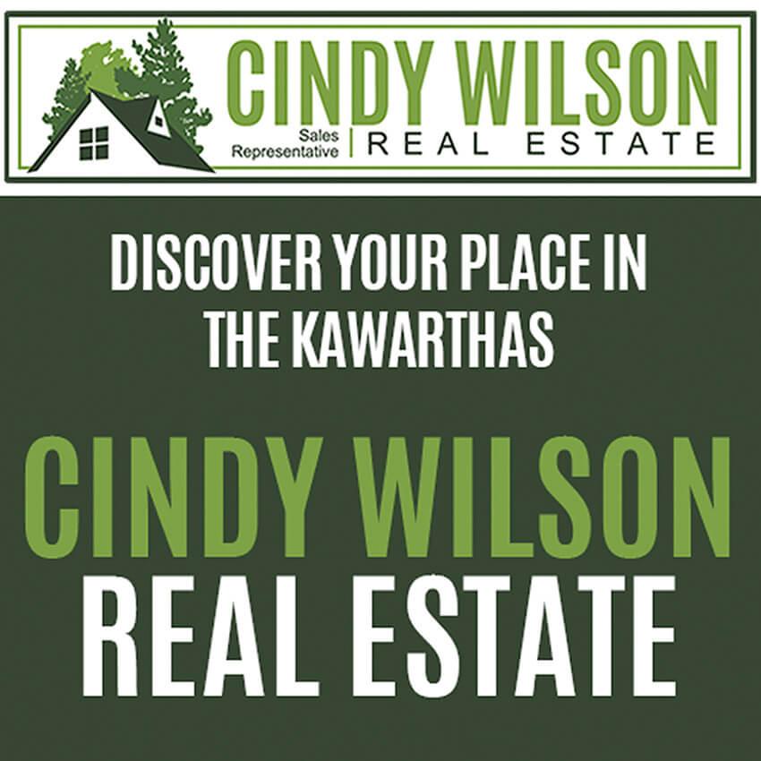 Cindy Wilson – Website